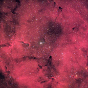 IC1396_20081028_Try1_V3_thumb.jpg